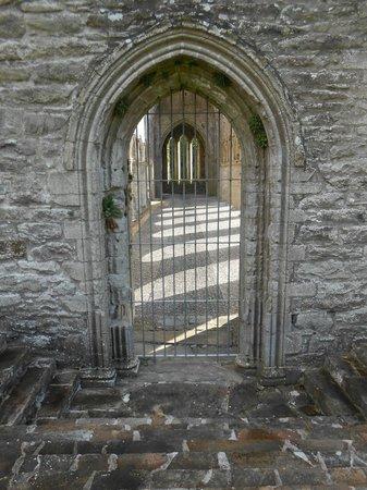 Boyle Abbey : view inside