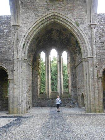 Boyle Abbey : more view