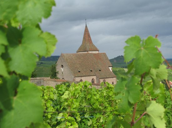 Sentier Viticole des Grands Crus : The fortified church of Hunawihr, surrounded by vineyards