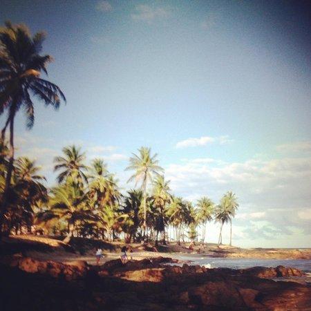 Sauipe Resorts: praia do hotel