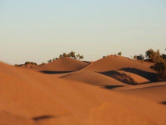 Esprite-Lamane: les dunes auteur de bivouac lamane