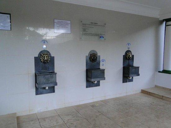 Parque das Aguas: Fonte Oriente