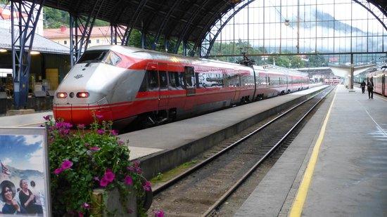 The Bergen Railway: Bergen to Oslo train
