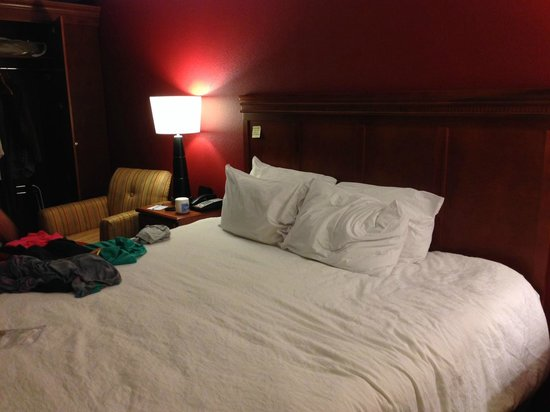 Hampton Inn Columbus-East: King Bed