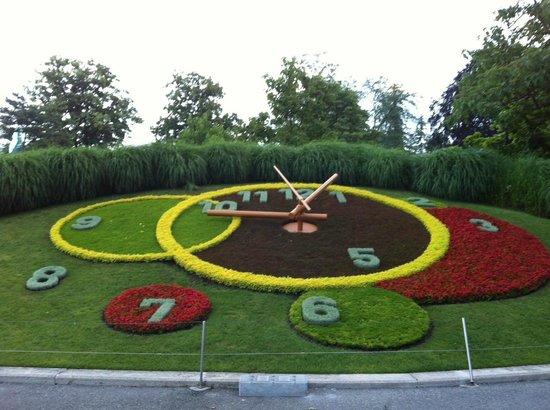 Swiss Luxury Apartments : Flower Clock^^