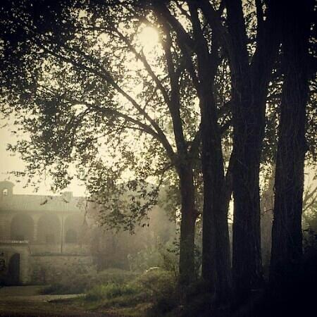 Il poggio Cardinale : Il bellissimo ingresso di prima mattina