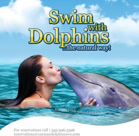 Dolphin Cove Cayman : Dolphin Kiss