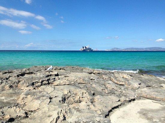 Strand Playa de ses Illetes: SES ILLETES