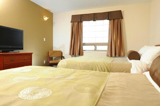 Service Plus Inn & Suites Grande Prairie: Standard Double Rooms
