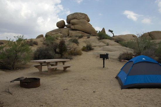 Jumbo Rocks Campground: Notre emplacement