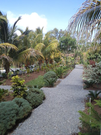 Jardin des 5 sens rodrigues island mauritius updated for Jardin 5 sens guadeloupe
