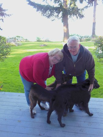 "Belle Vue Bed and Breakfast: Lovin' the ""puppies"""