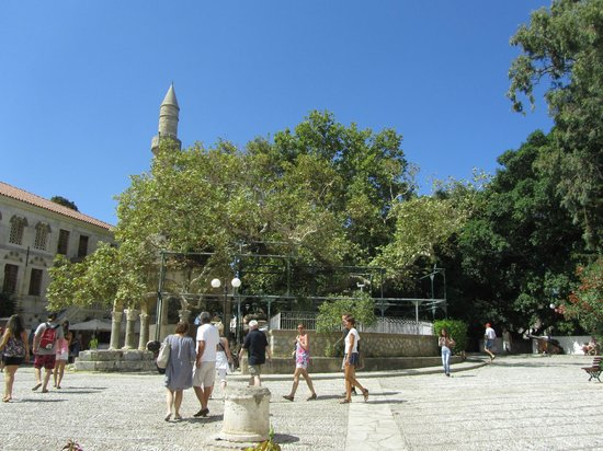 Hippocrates Tree : Turkish atmosphere is clearly visible in the area