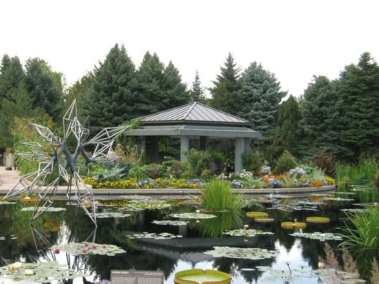 Denver Botanic Gardens: Japanese Garden