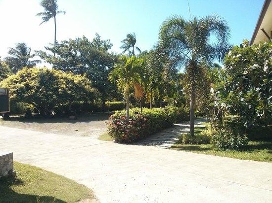 Grand Manita Beach Resort: gardens