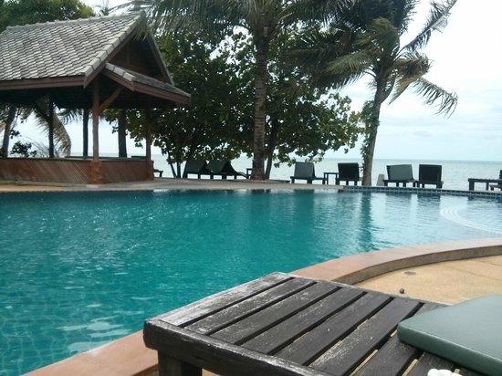 Grand Manita Beach Resort: pool