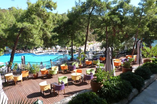Bodrum Park Resort: Piscine animee + bar