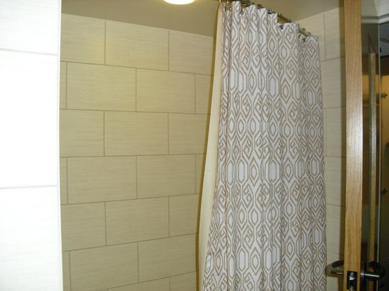 Disney's Polynesian Village Resort : shower