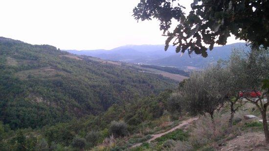 Agriturismo Ampugnano: senery
