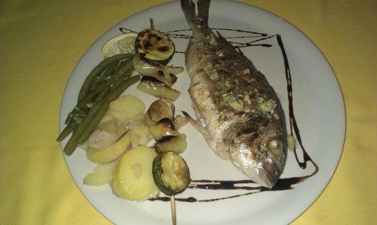 Srdela: fish