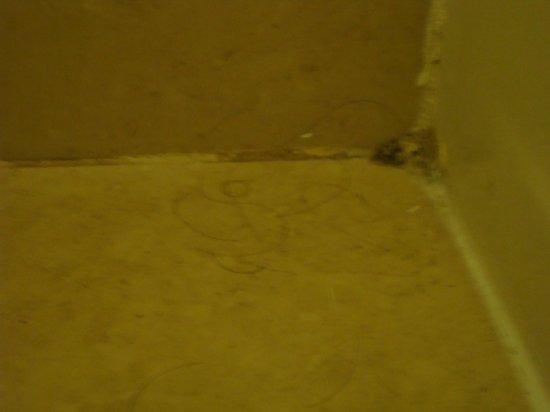Kellogg Conference Hotel at Gallaudet University: Haare und Dreckfilm auf dem Badezimmerboden
