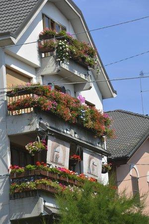 Villa Tre Angeli: Local home