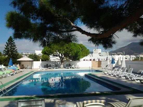 The Best Life Hotel : Бассейн и   дворик   отеля