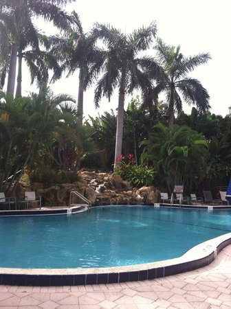 Renaissance Boca Raton Hotel: the beautiful oool
