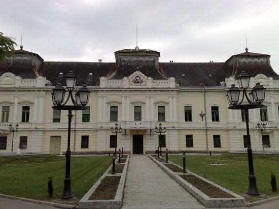 Vladicanski dvor