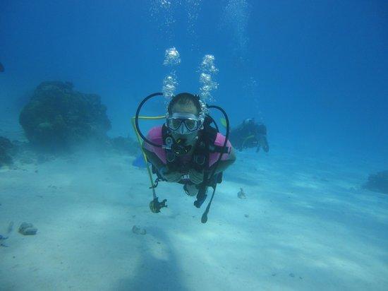 Blue Life Centro de Buceo: Maravilloso mundo submarino