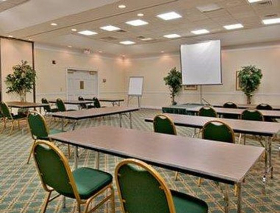 Springfield Hotel and Suites: Meeting Room