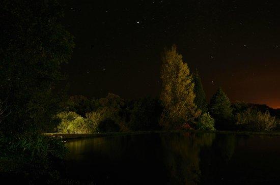 Zur Alten Mine: Nachtaufnahme im Garten der Alten Mine