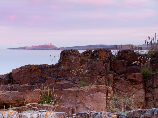 Beadnell Beach Guesthouse: Dunstanburgh Castle from Beadnell Point