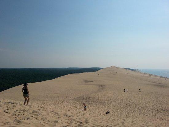 Dune du Pilat : view along the dune