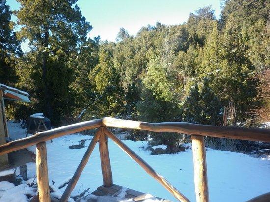 Del Sir Apart-Hotel: Vista desde el balcón hacia el bosque