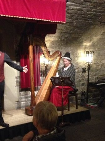 Cardiff Castle: the amazing harpist