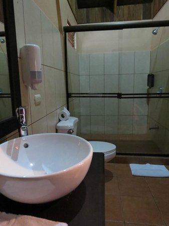 Hotel Arenal Montechiari: Baño