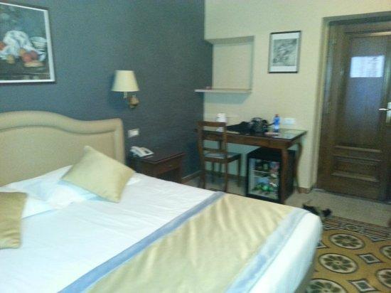 Hotel Piazza di Spagna: hotel room
