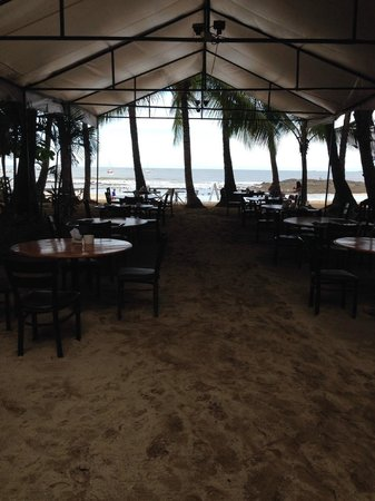 La Palapa : Restaurante sobre la playa