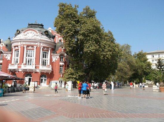 Varna, บัลแกเรีย: Teatro