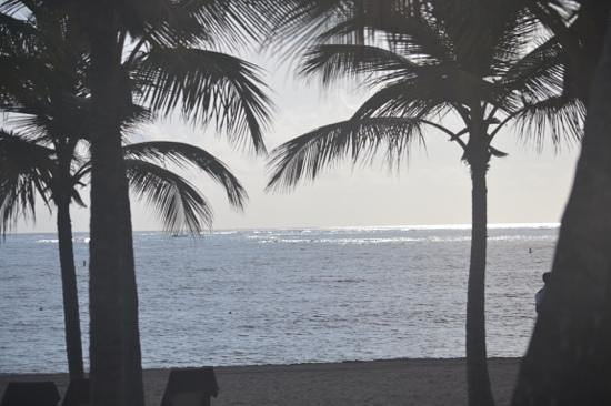 Secrets Royal Beach Punta Cana: views from the buffet in the early morning