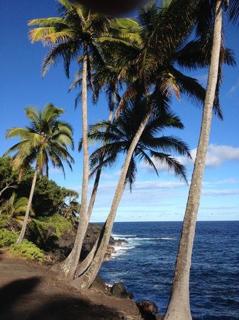 Nui Pohaku Big Island Adventure Tours: Black sand beaches