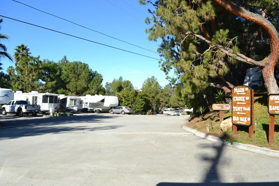 Rancho Los Coches RV Park : Beautiful landscaping and scenery.