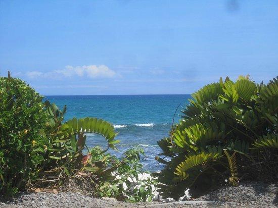 Hilton Waikoloa Village: Looking toward ocean