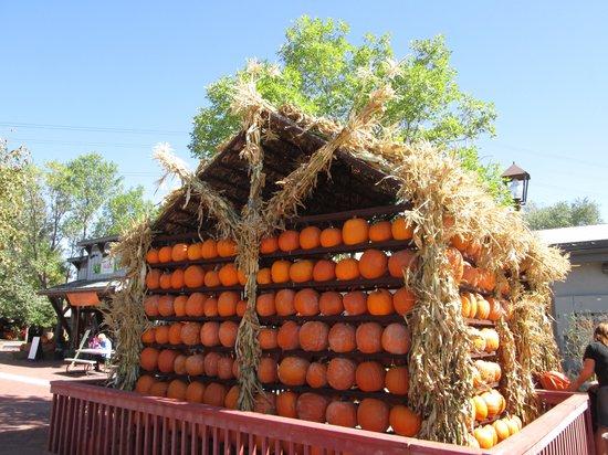 Gardner Village: Pumpkin House
