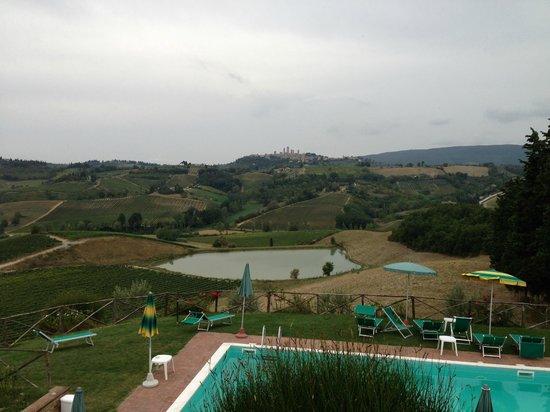 Fattoria Poggio Alloro: View from the patio.