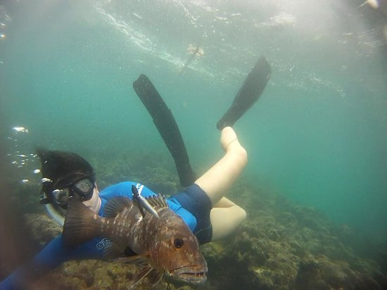 Spearfishing Puerto Rico: big snapper, lucky catch on his first time firing a speargun!