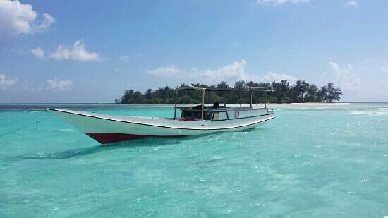 Kura Kura Resort: Robinson Crousue island