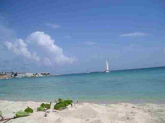 Turquoise Shell Inn : Beach View