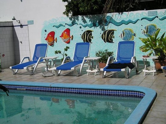 Turquoise Shell Inn : Pool Fishes